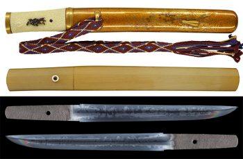 TA-020117-600idx